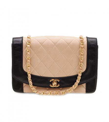 CHANEL BI-COLOR DIANA FLAP BAG